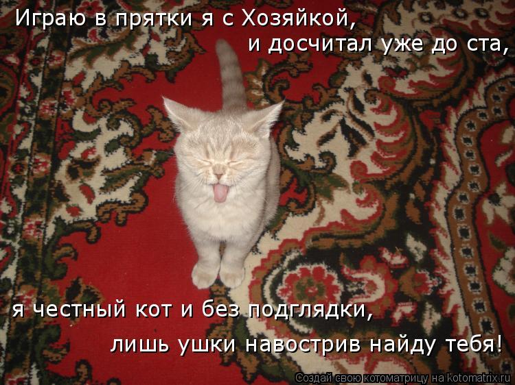Котоматрица: Играю в прятки я с Хозяйкой, и досчитал уже до ста, я честный кот и без подглядки, лишь ушки навострив найду тебя!