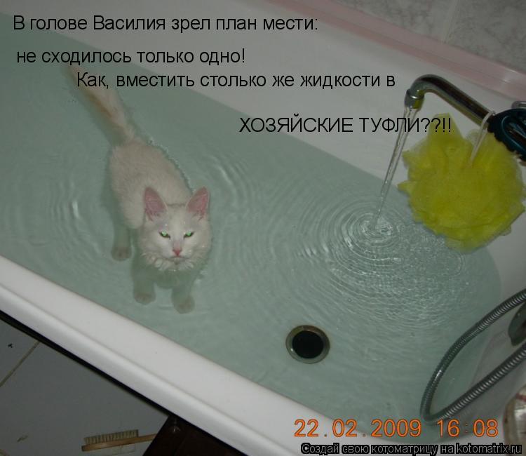 Котоматрица: В голове Василия зрел план мести: не сходилось только одно! Как, вместить столько же жидкости в  ХОЗЯЙСКИЕ ТУФЛИ??!!