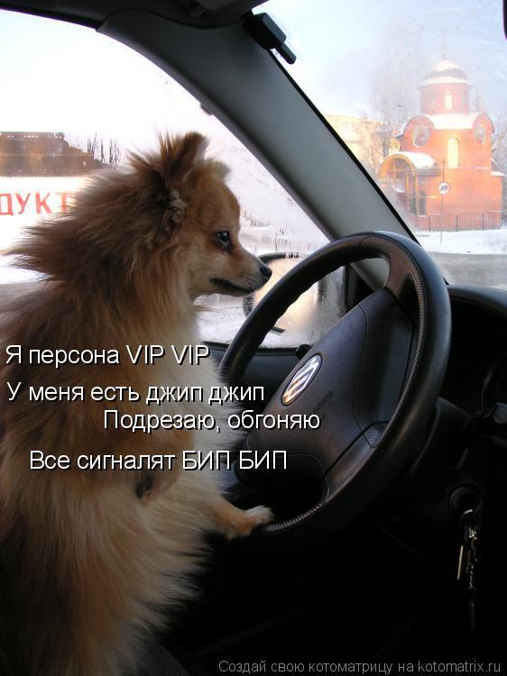 Котоматрица: Я персона VIP VIP  Я персона VIP VIP  У меня есть джип джип Подрезаю, обгоняю Все сигналят БИП БИП