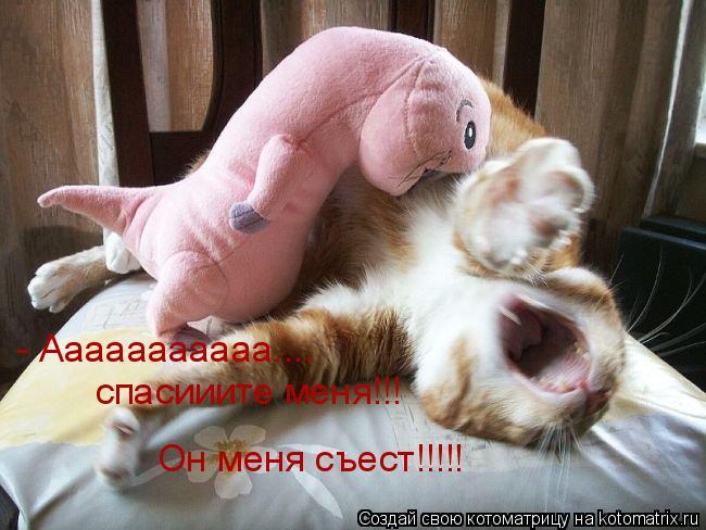 Котоматрица: - Ааааааааааа.... спасииите меня!!! Он меня съест!!!!!