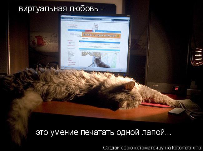 Котоматрица: виртуальная любовь -  это умение печатать одной лапой...