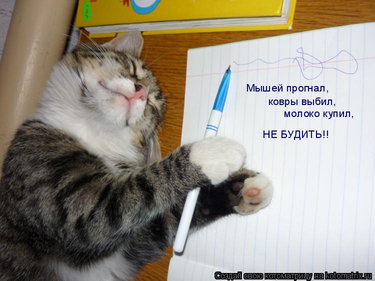 Мышей прогнал,  ковры выбил,  молоко купил, НЕ БУДИТЬ!!