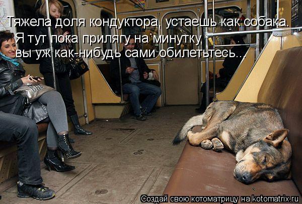 Котоматрица: Тяжела доля кондуктора, устаешь как собака. Я тут пока прилягу на минутку,  вы уж как-нибудь сами обилетьтесь...