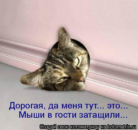 Котоматрица: Мыши в гости затащили... Дорогая, да меня тут... это...