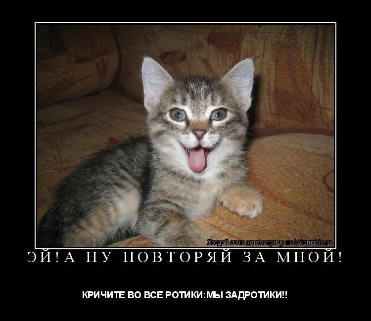 Котоматрица: Эй!А нУ пОвТоРяЙ зА мНоЙ! КРИЧИТЕ ВО ВСЕ РОТИКИ:МЫ ЗАДРОТИКИ!!