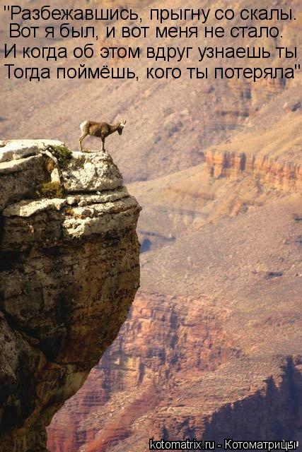 """Котоматрица: """"Разбежавшись, прыгну со скалы. Вот я был, и вот меня не стало. И когда об этом вдруг узнаешь ты Тогда поймёшь, кого ты потеряла"""""""