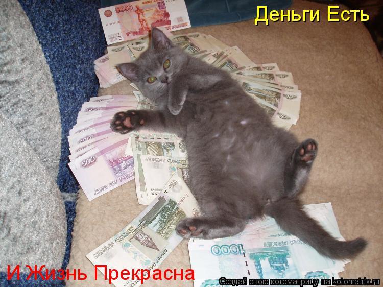 Котоматрица: Деньги Есть И Жизнь Прекрасна