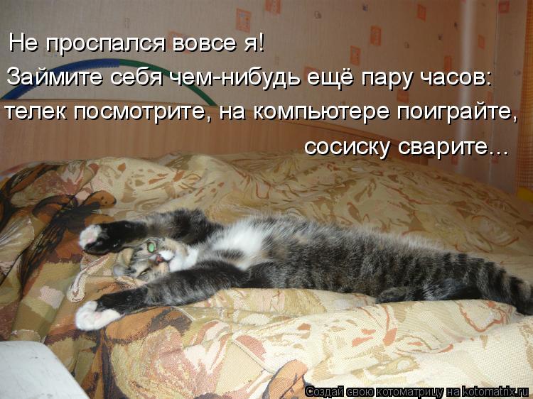 Котоматрица: Не проспался вовсе я! Займите себя чем-нибудь ещё пару часов: телек посмотрите, на компьютере поиграйте, сосиску сварите...