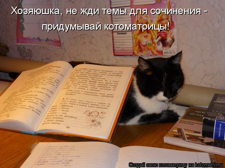 Котоматрица: Хозяюшка, не жди темы для сочинения - придумывай котоматрицы!
