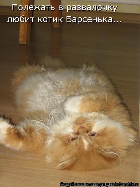 Котоматрица: Полежать в развалочку любит котик Барсенька...