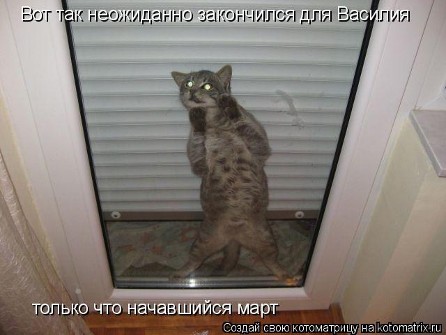 Котоматрица: Вот так неожиданно закончился для Василия только что начавшийся март