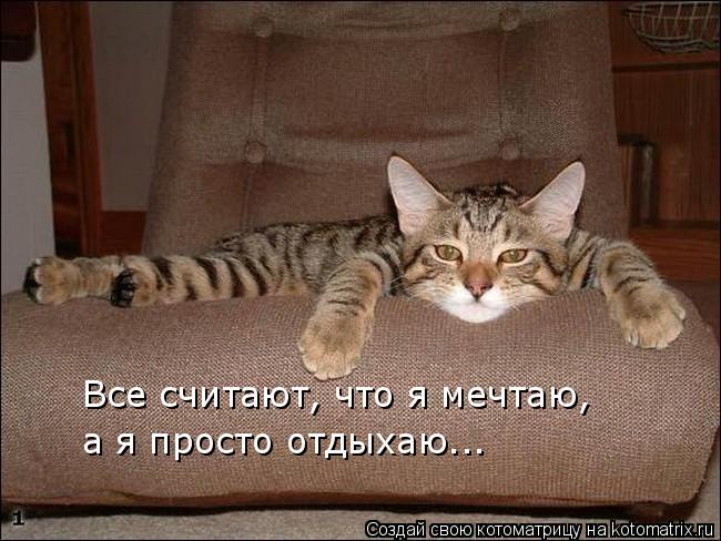 Котоматрица: Все считают, что я мечтаю, а я просто отдыхаю...