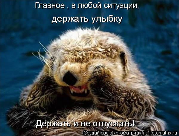 Котоматрица: Главное , в любой ситуации, держать улыбку Держать и не отпускать!