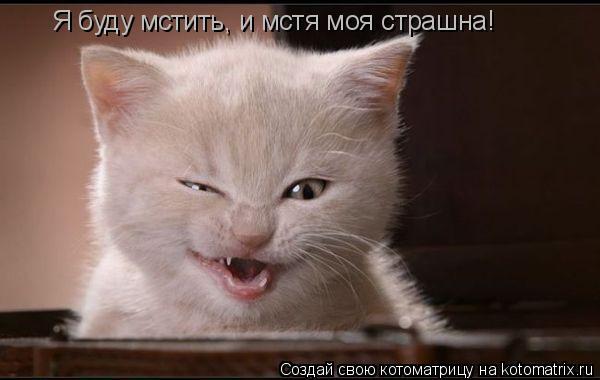 Котоматрица: Я буду мстить, и мстя моя страшна!