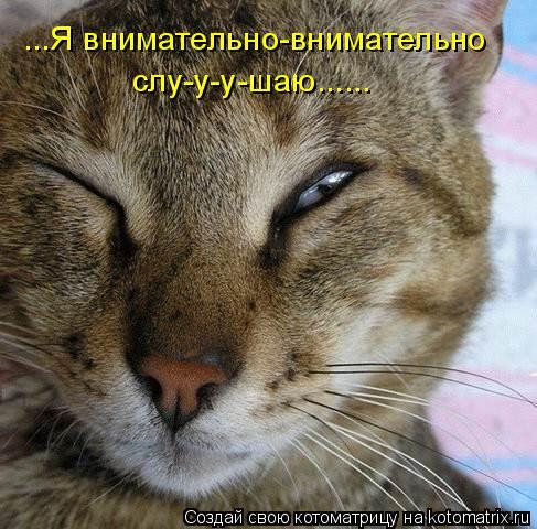Котоматрица: ...Я внимательно-внимательно  слу-у-у-шаю......