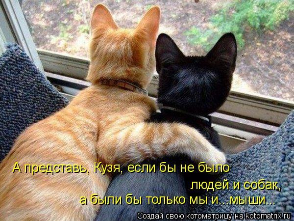 Котоматрица: А представь, Кузя, если бы не было людей и собак, а были бы только мы и...мыши...