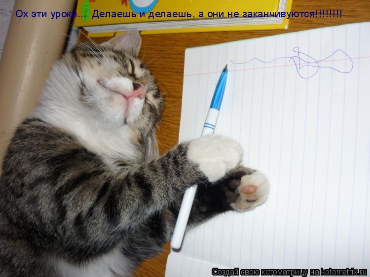 Котоматрица: Ох эти уроки...  Делаешь и делаешь, а они не заканчивуются!!!!!!!!  Ох эти уроки...  Делаешь и делаешь, а они не заканчивуются!!!!!!!!