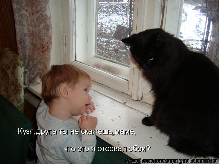 Котоматрица: -Кузя,друг,а ты не скажешь маме, что это я оторвал обои?