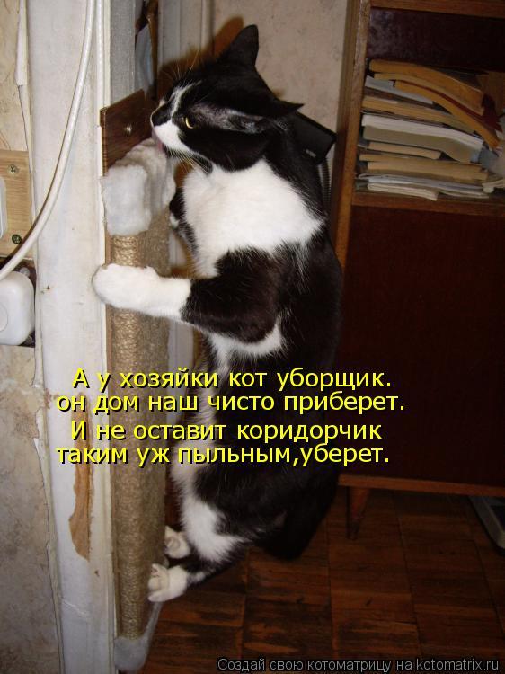 Котоматрица: А у хозяйки кот уборщик. И не оставит коридорчик он дом наш чисто приберет. таким уж пыльным,уберет.