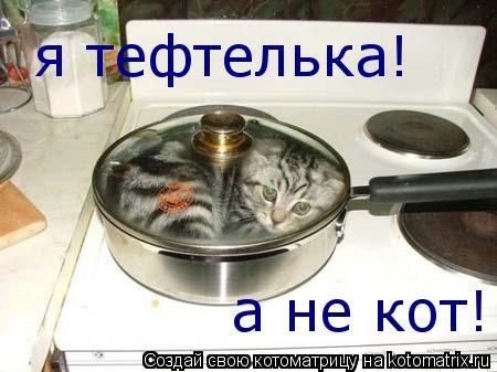 Котоматрица: я тефтелька! а не кот!