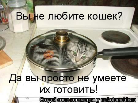 Котоматрица: Вы не любите кошек? Да вы просто не умеете  их готовить!
