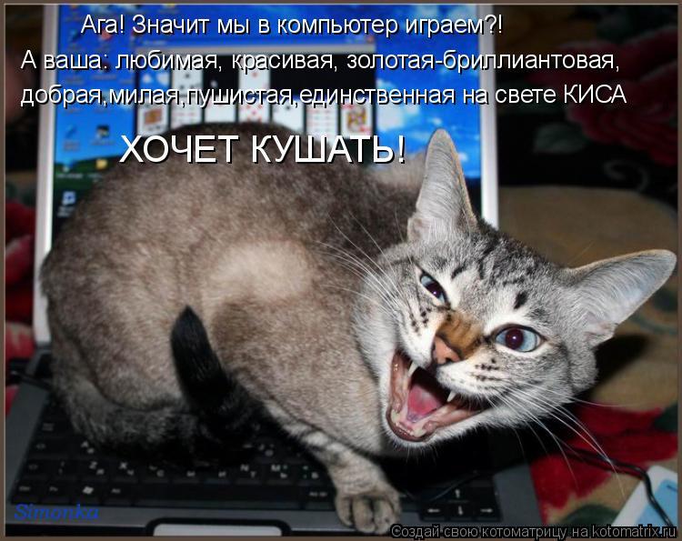 Котоматрица: Ага! Значит мы в компьютер играем?! А ваша: любимая, красивая, золотая-бриллиантовая, добрая,милая,пушистая,единственная на свете КИСА ХОЧЕТ