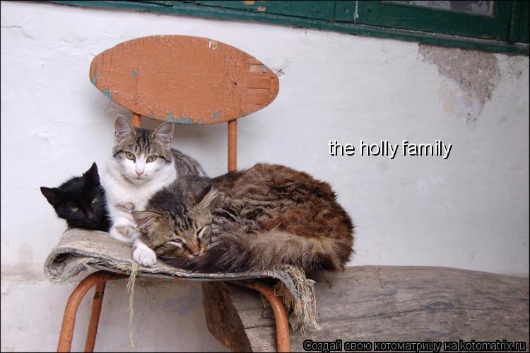 Котоматрица: the holly family