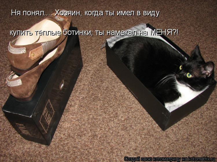 Котоматрица: Ня понял.... Хозяин, когда ты имел в виду купить тёплые ботинки, ты намекал на МЕНЯ?!