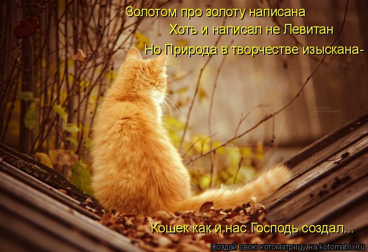 Котоматрица: Золотом про золоту написана Хоть и написал не Левитан Но Природа в творчестве изыскана Кошек как и нас Господь создал... -