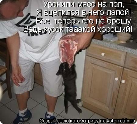 Котоматрица: Уронили мясо на пол, Я вцепился в него лапой! Всё, теперь его не брошу, Ведь кусок тааакой хороший!