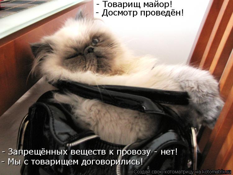 Котоматрица: - Товарищ майор! - Досмотр проведён! - Запрещённых веществ к провозу - нет! - Мы с товарищем договорились!