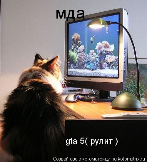 Котоматрица: мда  gta 5( рулит )