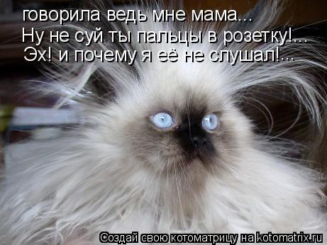 Котоматрица: говорила ведь мне мама...  Ну не суй ты пальцы в розетку!... Эх! и почему я её не слушал! ...