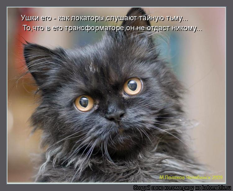 Котоматрица: Ушки его - как локаторы,слушают тайную тьму... То,что в его трансформаторе,он не отдаст никому...