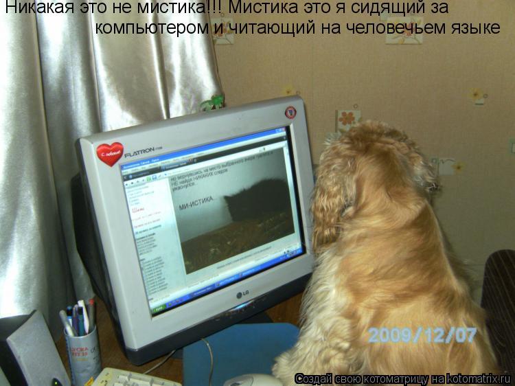 Котоматрица: Никакая это не мистика!!! Мистика это я сидящий за компьютером и читающий на человечьем языке