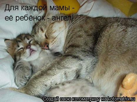 Котоматрица: Для каждой мамы - её ребёнок - ангел!