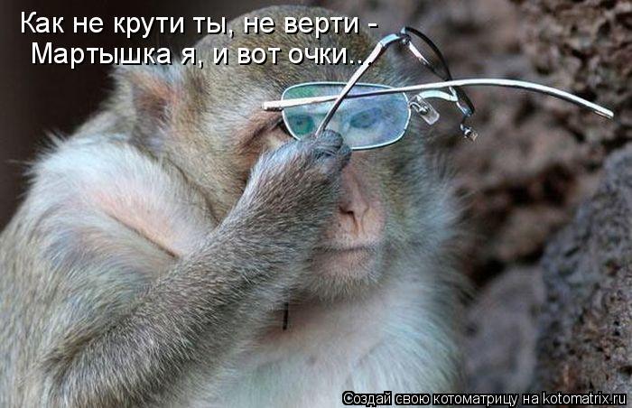 Котоматрица: Как не крути ты, не верти - Мартышка я, и вот очки...