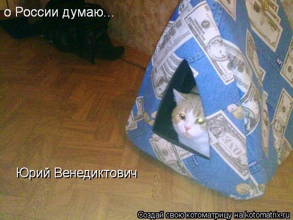 Котоматрица: Юрий Венедиктович
