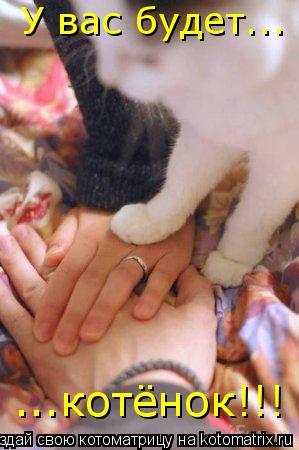 Котоматрица: У вас будет... ...котёнок!!!