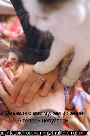 Котоматрица: - Объявляю вас мужем и женой! А теперь целуйтесь...
