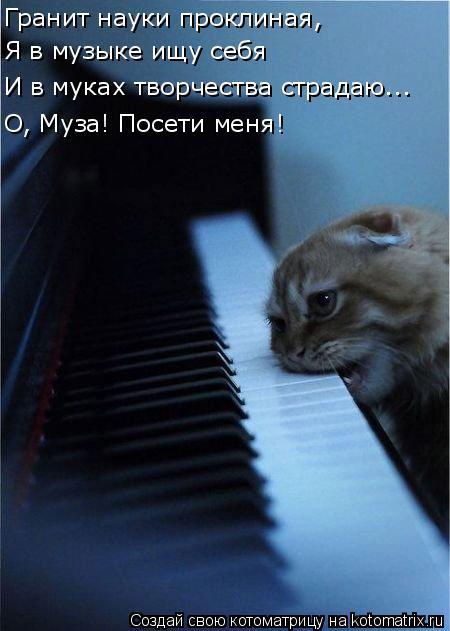 Котоматрица: Гранит науки проклиная, Я в музыке ищу себя  О, Муза! Посети меня! И в муках творчества страдаю...