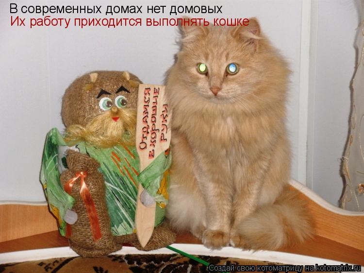 Котоматрица: В современных домах нет домовых Их работу приходится выполнять кошке