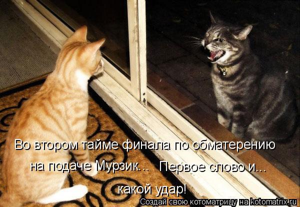 Котоматрица: Во втором тайме финала по обматерению  на подаче Мурзик... Первое слово и... какой удар!