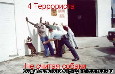 Котоматрица: 4 Террориста Не считая собаки