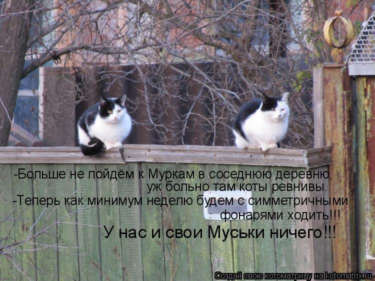 Котоматрица: -Больше не пойдём к Муркам в соседнюю деревню, уж больно там коты ревнивы. -Теперь как минимум неделю будем с симметричными  фонарями ходить!