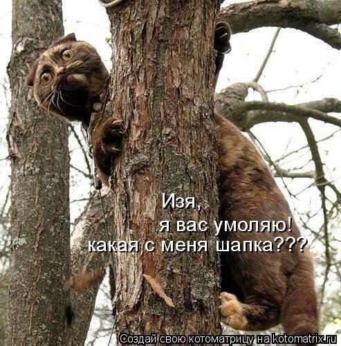 http://kotomatrix.ru/images/lolz/2009/12/10/429508.jpg