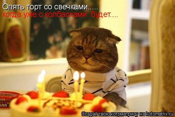 Котоматрица: Опять торт со свечками..... когда уже с колбасками  будет....