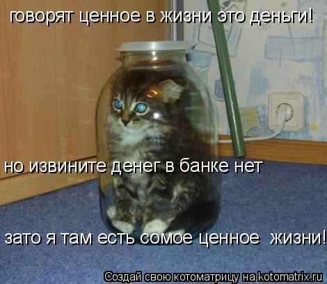 Котоматрица: говорят ценное в жизни это деньги! но извините денег в банке нет зато я там есть сомое ценное  жизни!)