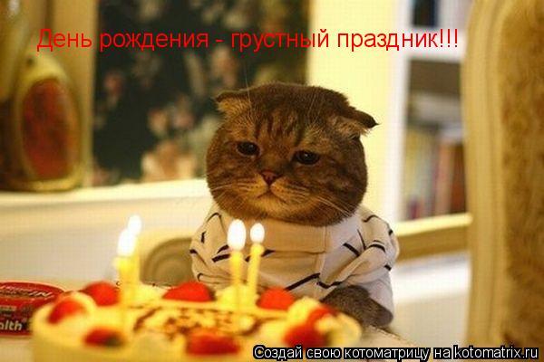 Котоматрица: День рождения - грустный праздник!!!