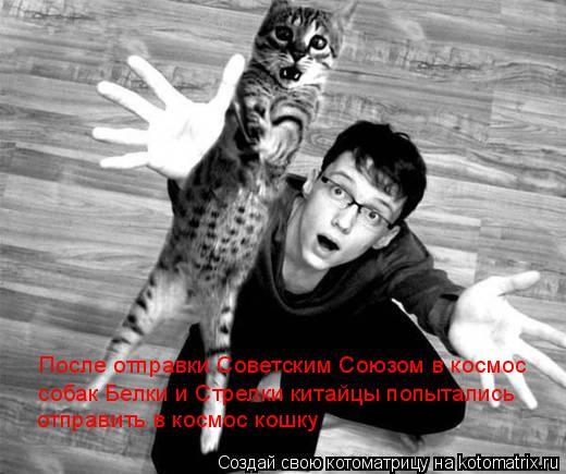 Котоматрица: После отправки Советским Союзом в космос собак Белки и Стрелки китайцы попытались отправить в космос кошку